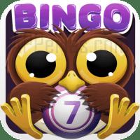 Juego de bingo Bingo Crack