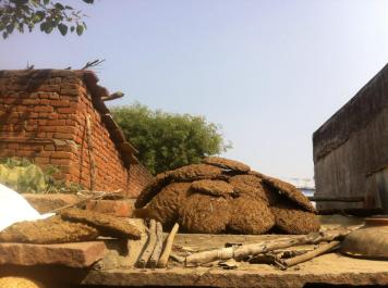 cow dung fuel in step well village