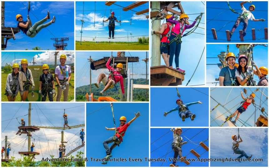 aerial walk collage