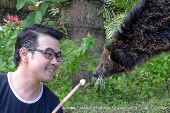 Bearcat Feeding