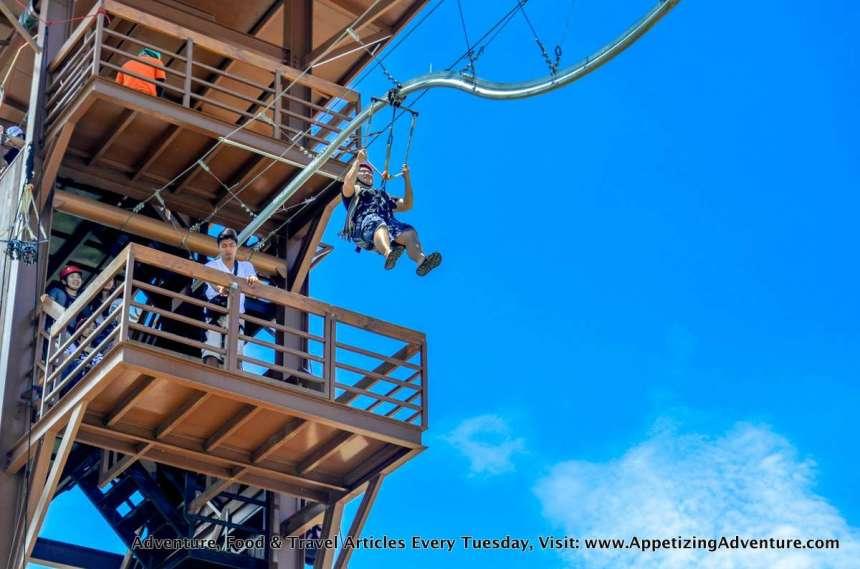 avatar-one-roller-coaster-zipline-sandbox-031