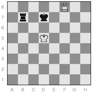 queen-versus-rook Euwe position of chess