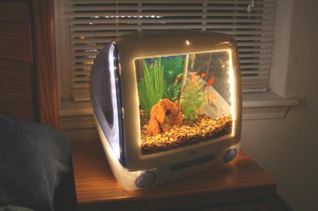 Macquariums  Aquariums built from iMacs  Applefritter