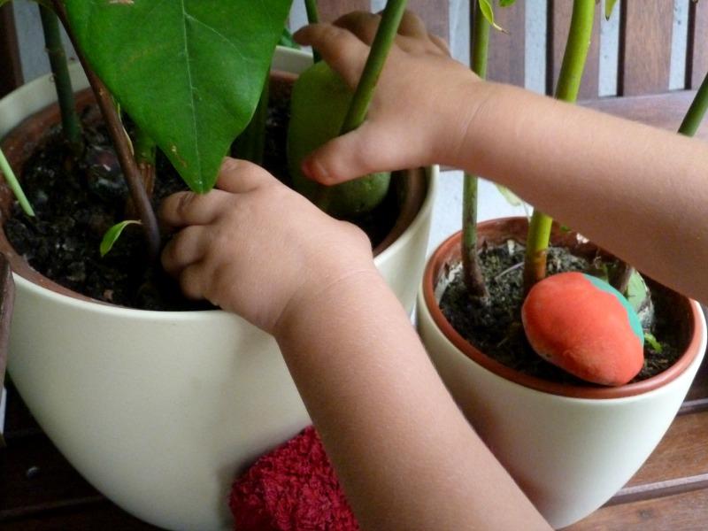 hands arranging diy garden markers in a plant pot