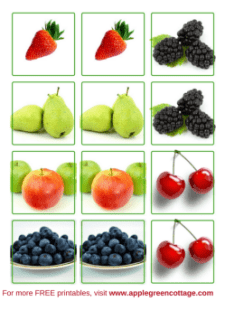 fruit printables