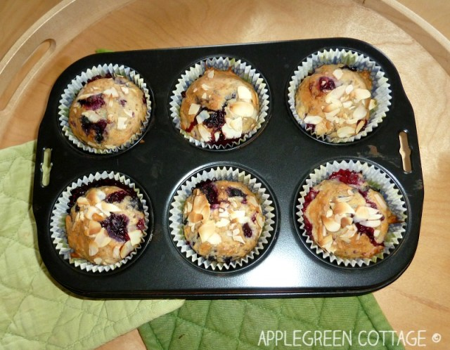 vegan muffins with mixed berries