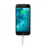 Personalizza la suoneria di ricarica del tuo iPhone con il tweak Malipo