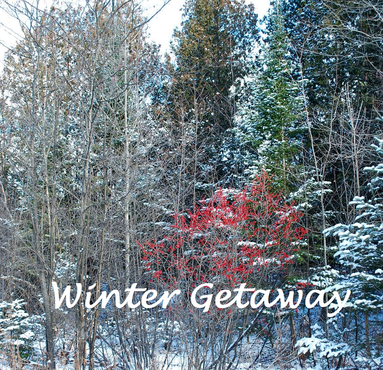Winter Rates Great time to make a getaway