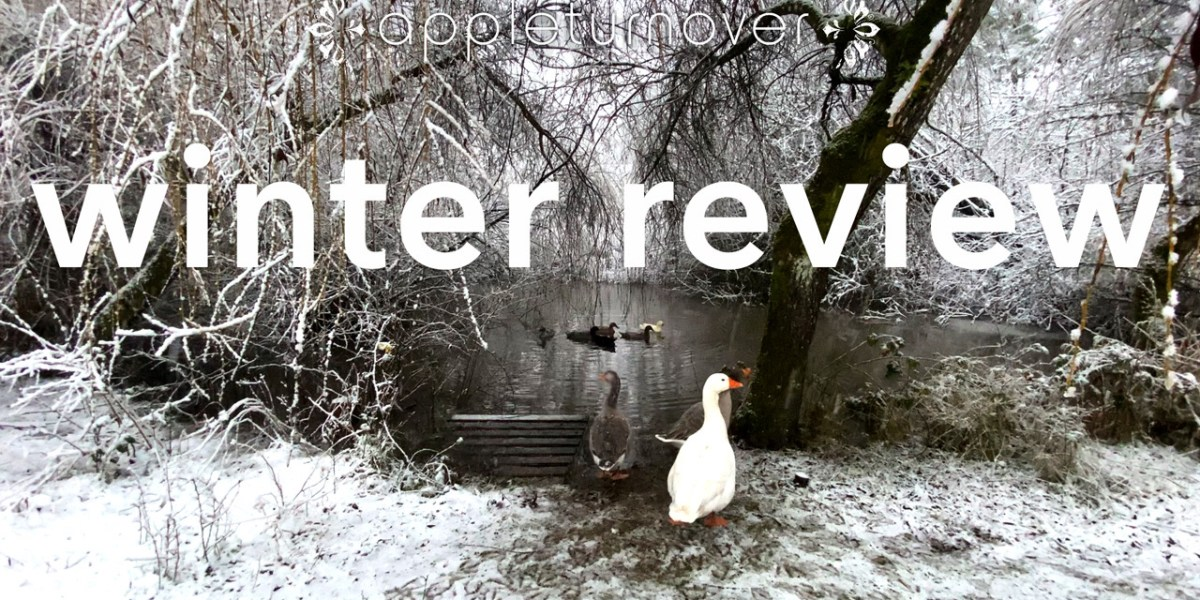 winter review