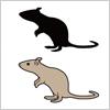 ネズミのイラストと影絵素材