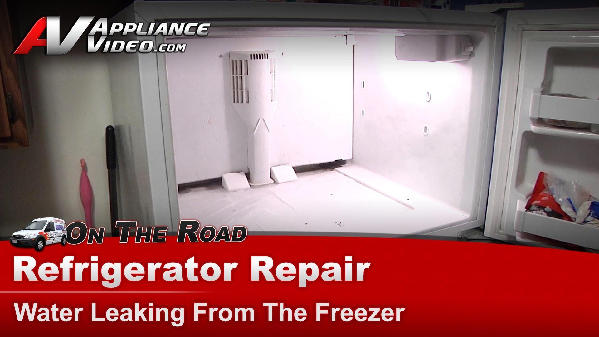 Kenmore 10677292790 Refrigerator Repair  Water leaking