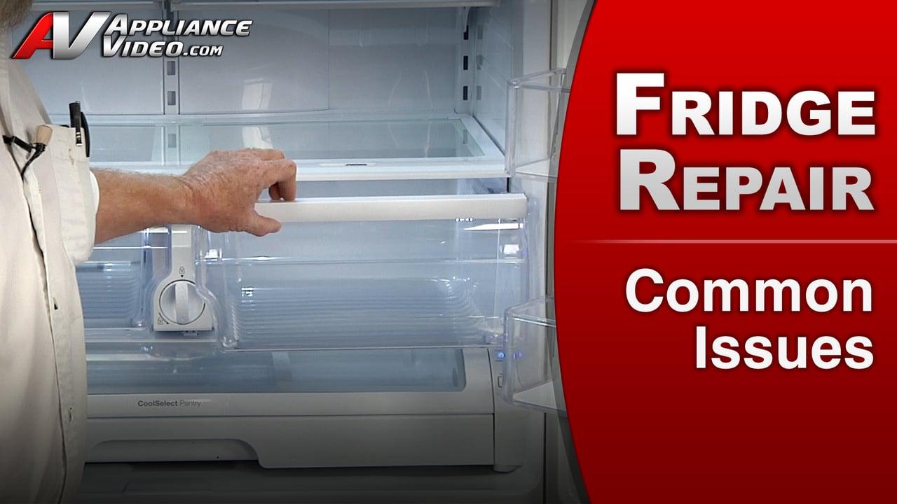 Samsung RF263TEAESR Refrigerator  Common Issues