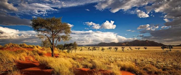 4 Bilder 1 Wort Namibia Tagesrätsel Juni 2019 Lösungen