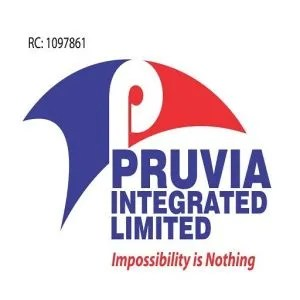 Sales Officer at Pruvia Integrated Limited