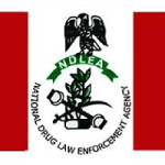 NDLEA Ranks and Salary Structure | The Amount NDLEA Pay Their Staff