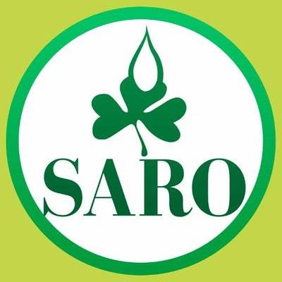 Saroafrica International Limited Logo