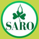 Apply for Nationwide Graduate Trainees Recruitment at Saroafrica International Limited, 2018/2019