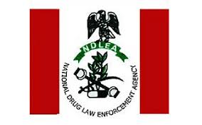 ndlea past question and answer