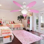 Girls Shared Bedroom Ideas Home Design Decorating Atmosphere Older Layout Bunk Beds For Twin Set Dream Bedrooms Teenage Sets Sharing Designs Apppie Org