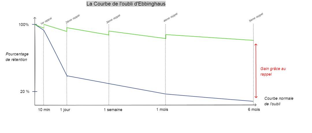 La courbe de l'oubli d'Ebbinghaus