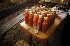 Bouteilles de jus de pommes pasteurisées et stérilisées