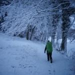 Marche sous la neige