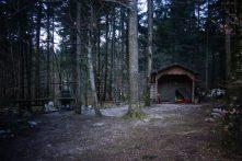 Nuit en forêt, Slovénie