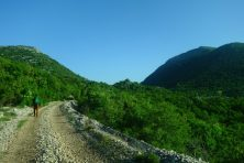 Végétation luxuriante, Ciro Trail