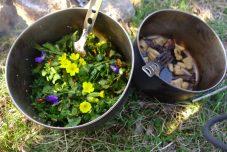 Salade fleurie et poêlée de champignons