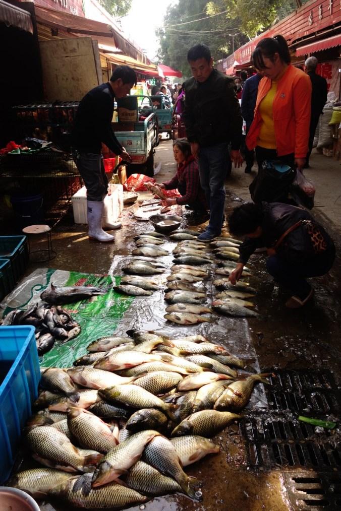 Poisson - Marché de rue - Lanzhou