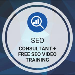 Buy SEO Consultant + Free SEO Video Training