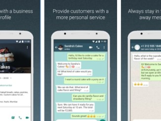 whatsapp business app for pc download