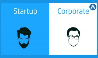 corporate job or startup