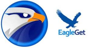 تحميل برنامج EagleGet للويندوز