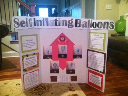science project 2014