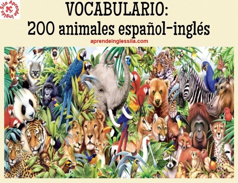 Lista De Vocabulario 200 Animales Español Inglés Con Pronunciación