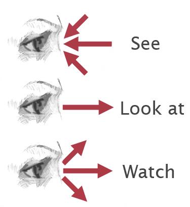 Diferencia Entre See Look Y Watch Aprende Ingles Sila