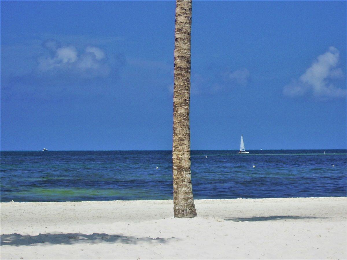 que-hacer-en-riviera-maya-mexico-Playa-Tortugas-Cancún-–-Riviera-Maya