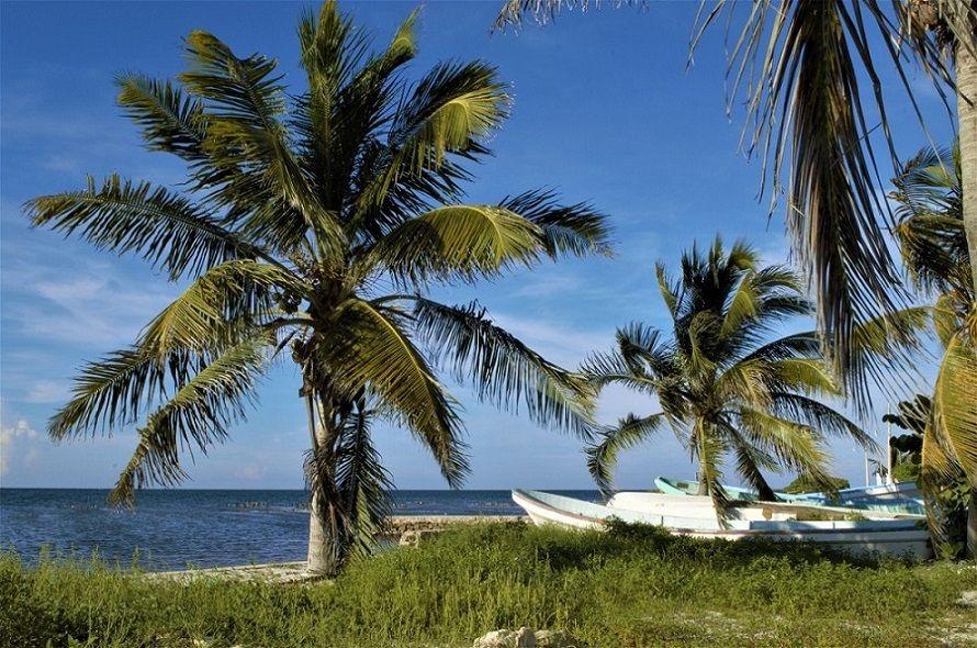 6 que visitar en riviera maya Puerto Dzilam de Bravo – Riviera Maya