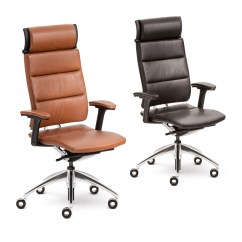 Designer Executive Chair Balance Ball Office Open Up Modern Classic Ergonomic Chairs