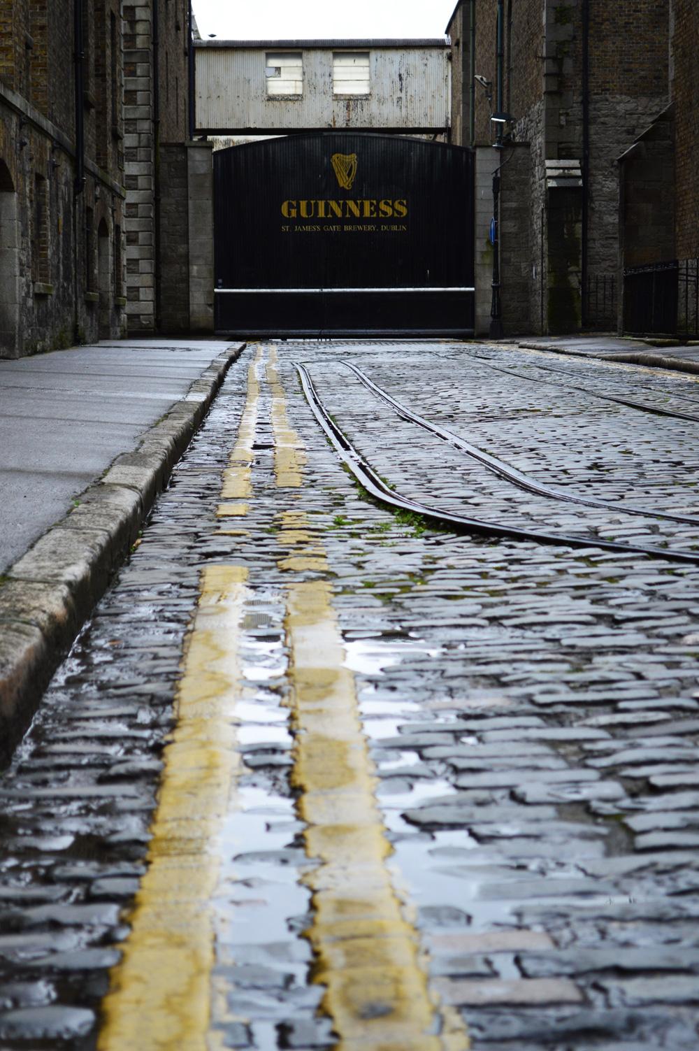 Visiter Guiness Storehouse Dublin