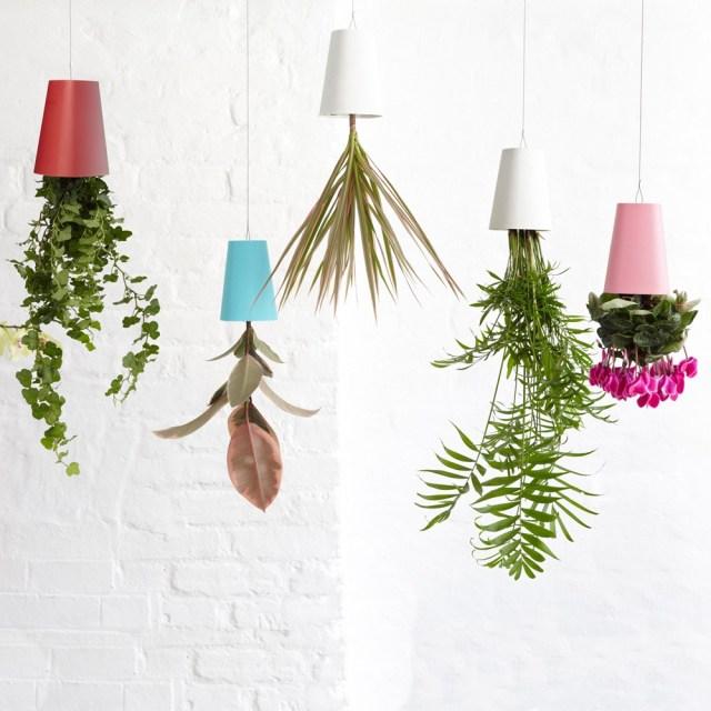 Sky planter - Boskke