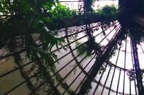 Madrid Real Jardin Botanico