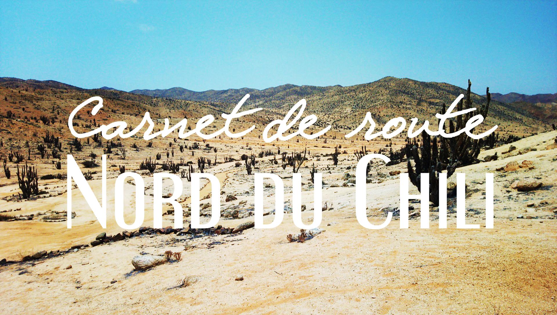 Carnet de route - Road-trip au nord du Chili / Après la flemme