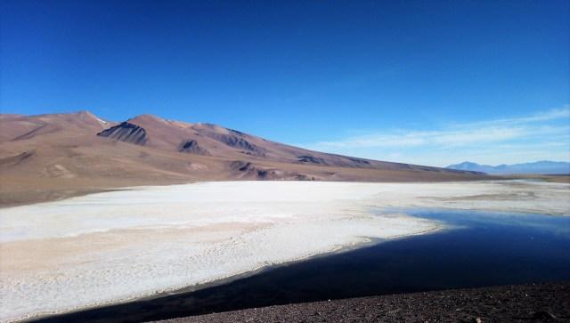 Laguna Santa Rosa, Parc Nevado Tres Cruces - Carnet de voyage au Chili / Après la flemme