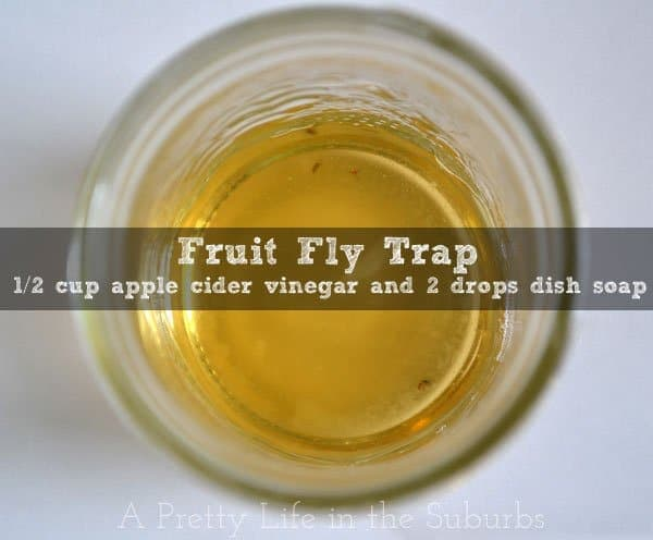 Kitchen Kapers DIY Fruit Fly Trap  A Pretty Life In The