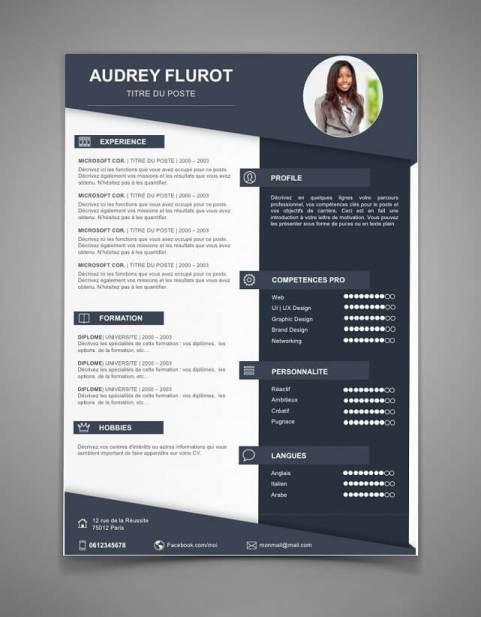infografik cv resume