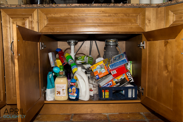 Organize Underneath the kitchen sink-9673