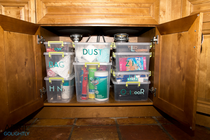 Organize Underneath the kitchen sink-9733