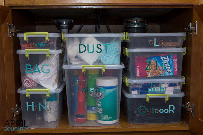 Organize Underneath the kitchen sink-9747